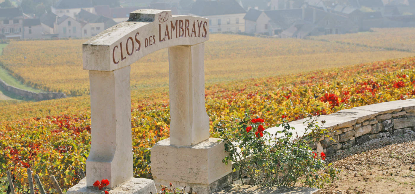 フランス ブルゴーニュ コート・ド・ニュイ モレ・サン・ドニ