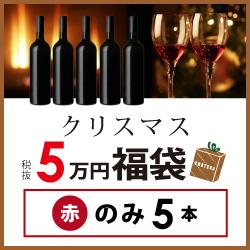 クリスマス福袋5万円(赤のみ5本) KF12-1 [750ml x 5]-0