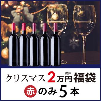 クリスマス福袋2万円(赤のみ5本) CF12-3 [750ml x 5]-0