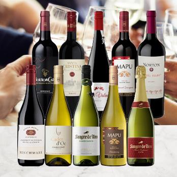 ワインのプロが選んだ!人気ワインおまかせ頒布会 HE5-1 [750ml x 10]-0