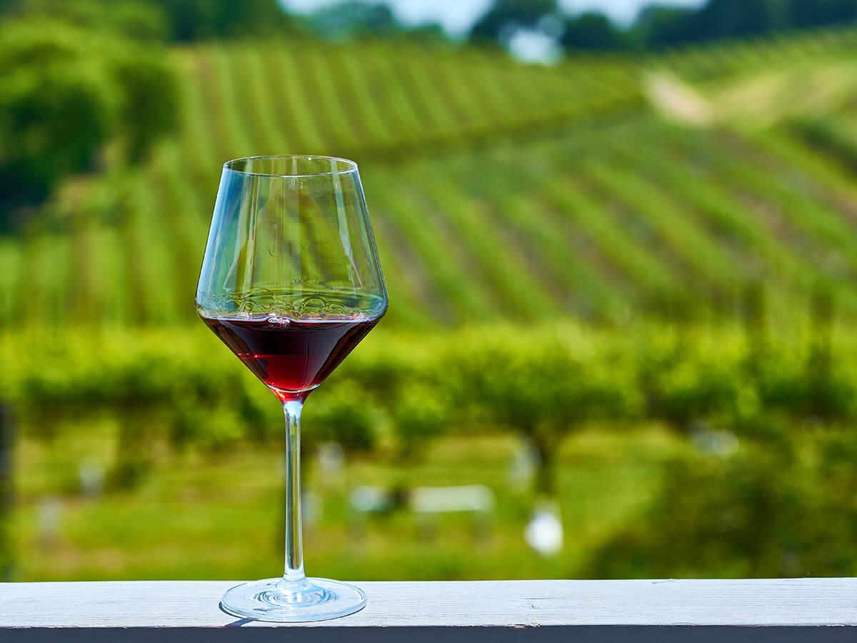 赤ワイン グラス