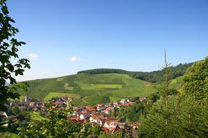 ベルンハルト・フーバー バーデン
