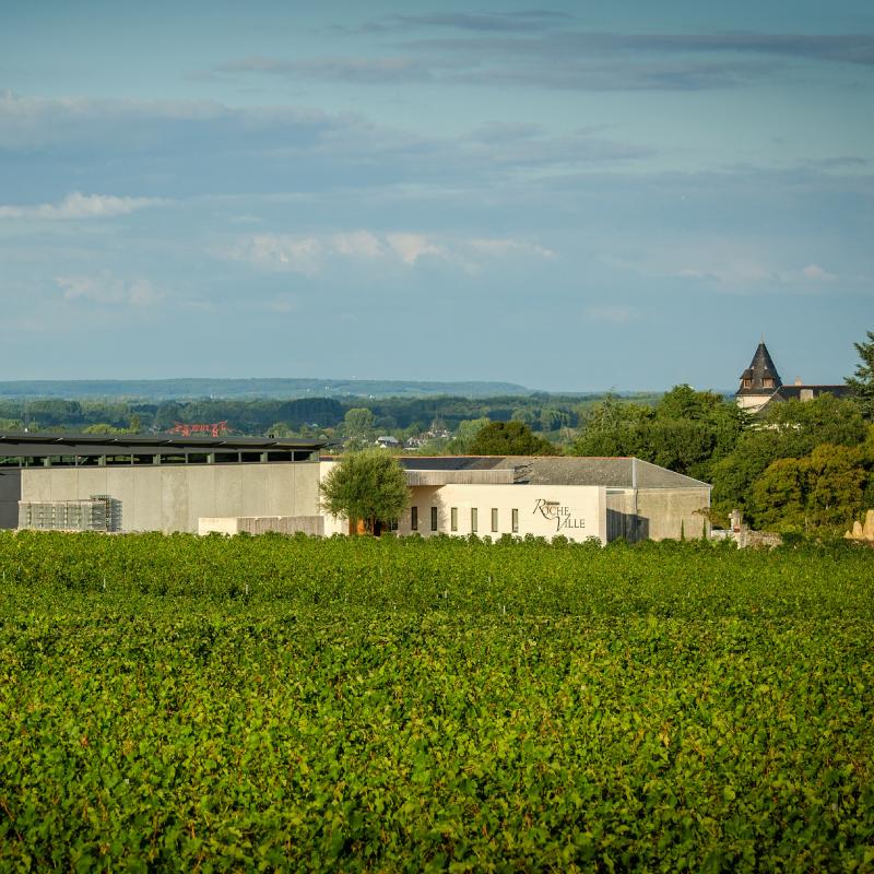 ドメーヌ・ド・ロシュヴィル / DOMAINE DE ROCHEVILLE