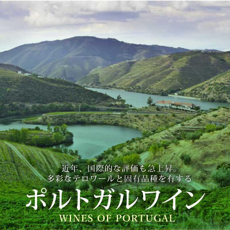 ポルトガルワイン - 主要産地の特徴とおすすめ銘柄