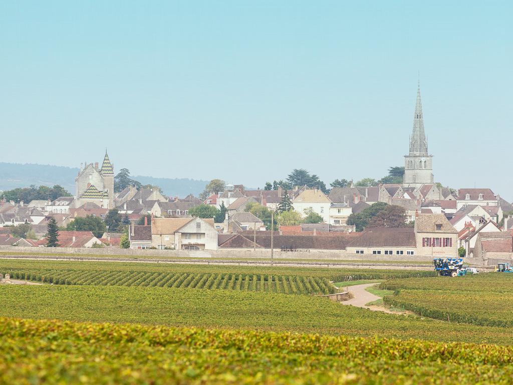 フランス ブルゴーニュ コート・ド・ボーヌ ムルソー