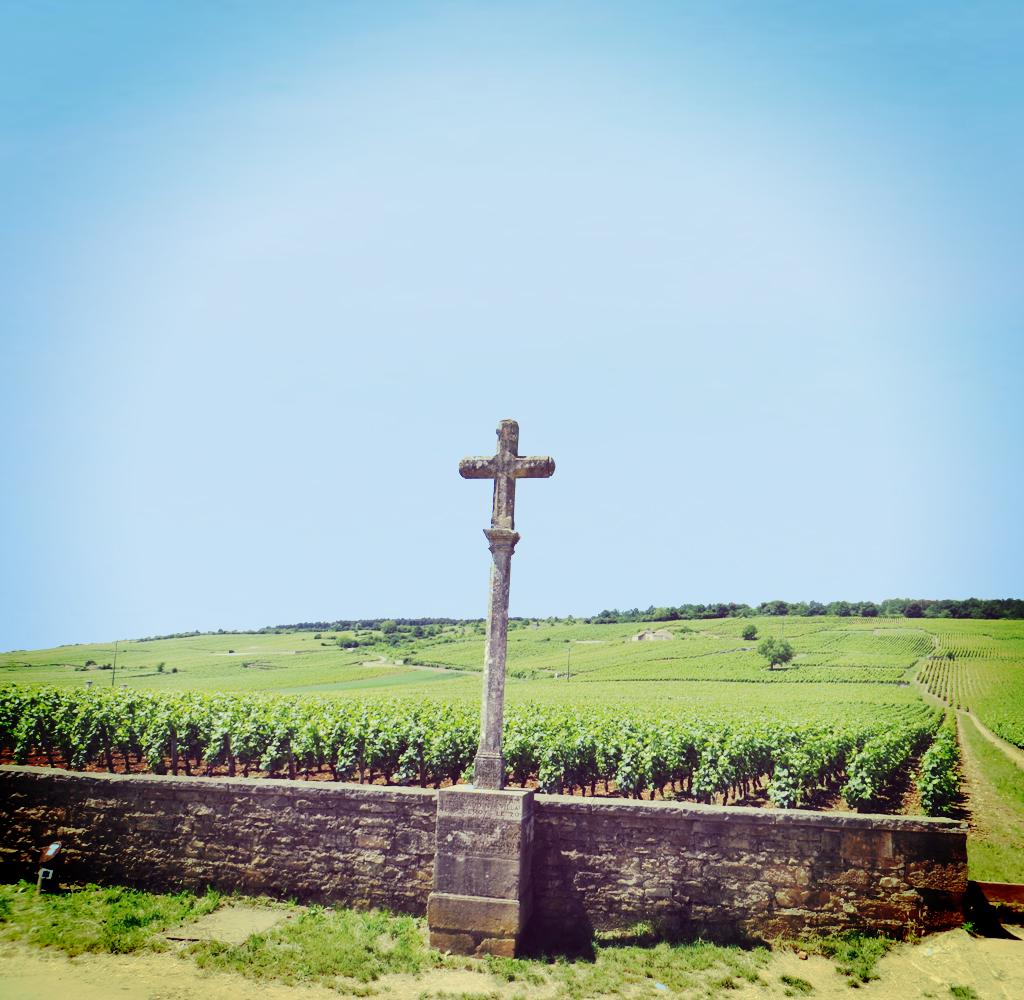 フランス ブルゴーニュ コート・ド・ニュイ ヴォーヌ・ロマネ