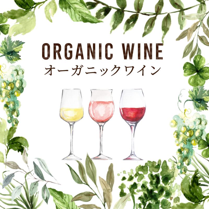 タイプ別に選ぶ!おすすめオーガニックワイン