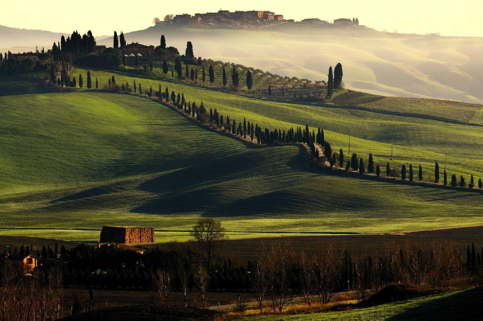 イタリア トスカーナ ボルゲリエリア