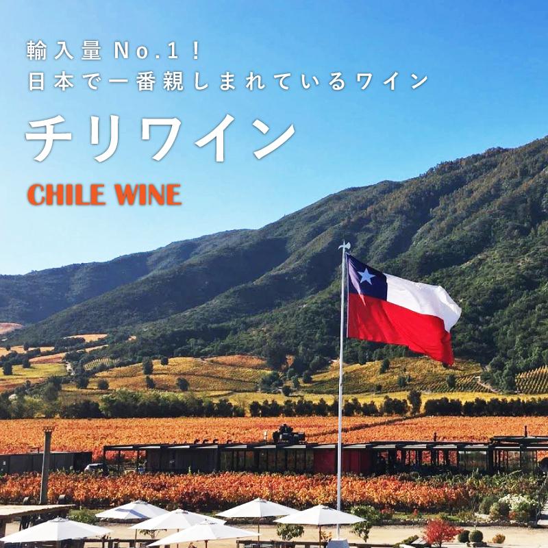 チリワイン - 輸入量No.1!日本で一番親しまれているワイン