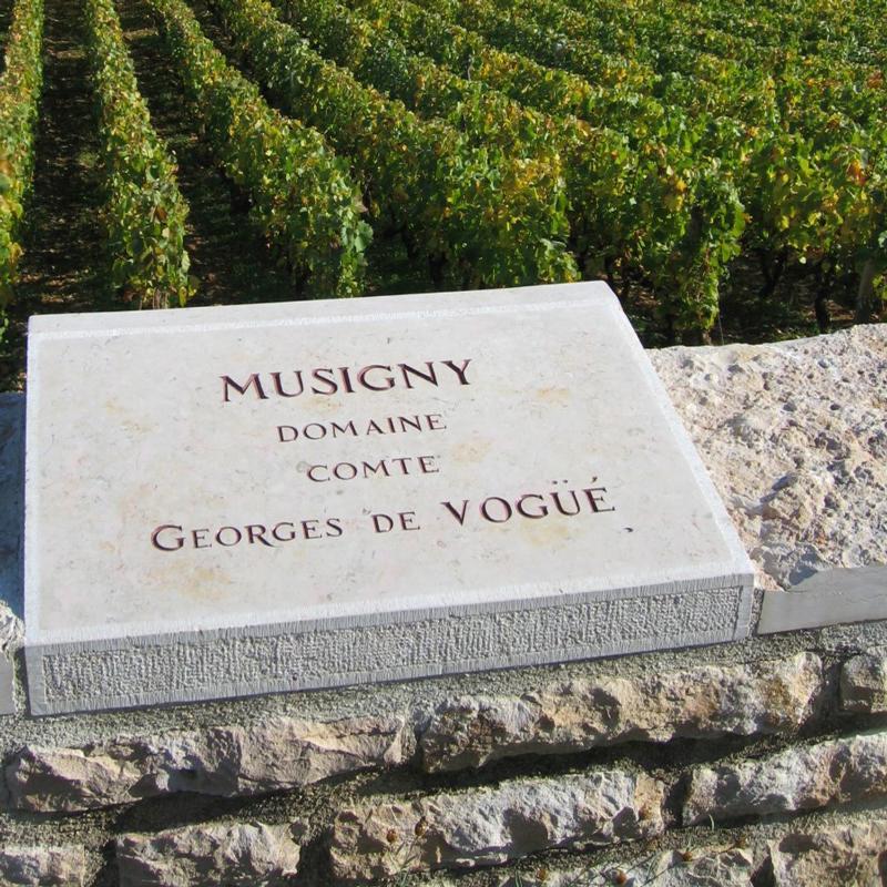 コント・ジョルジュ・ド・ヴォギュエ / COMTE GEORGES DE VOGUE