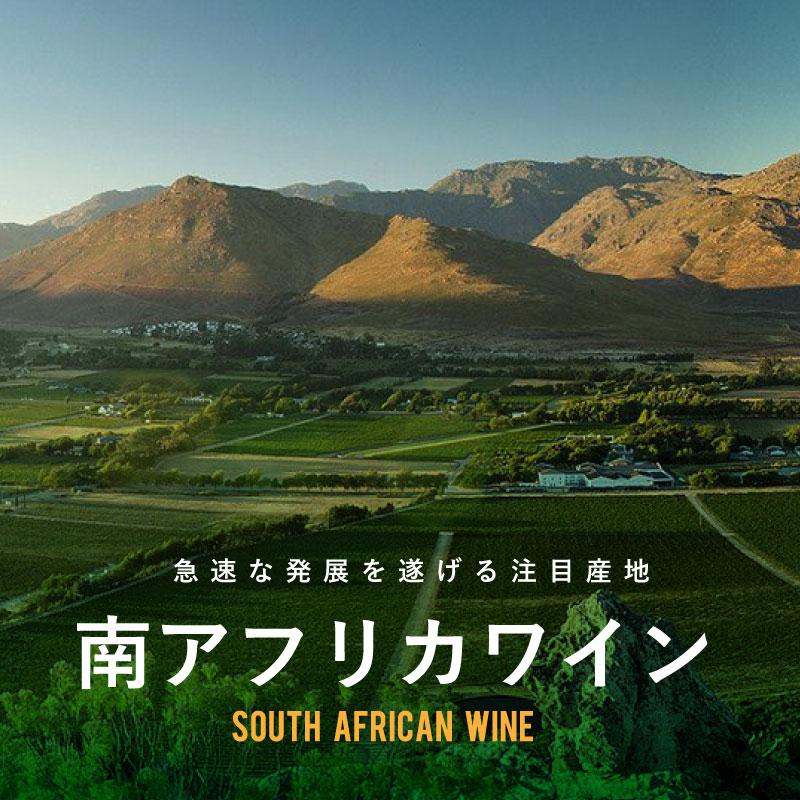 南アフリカワイン - 急速な発展を遂げる注目産地